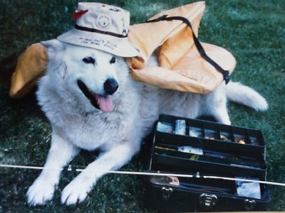 Smokey the dog. If he looks familiar, it may be because he makes several appearances in crime scene footage back in 1989.